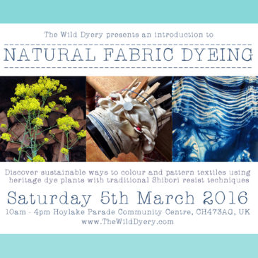 Workshops with The Wild Dyer 2016