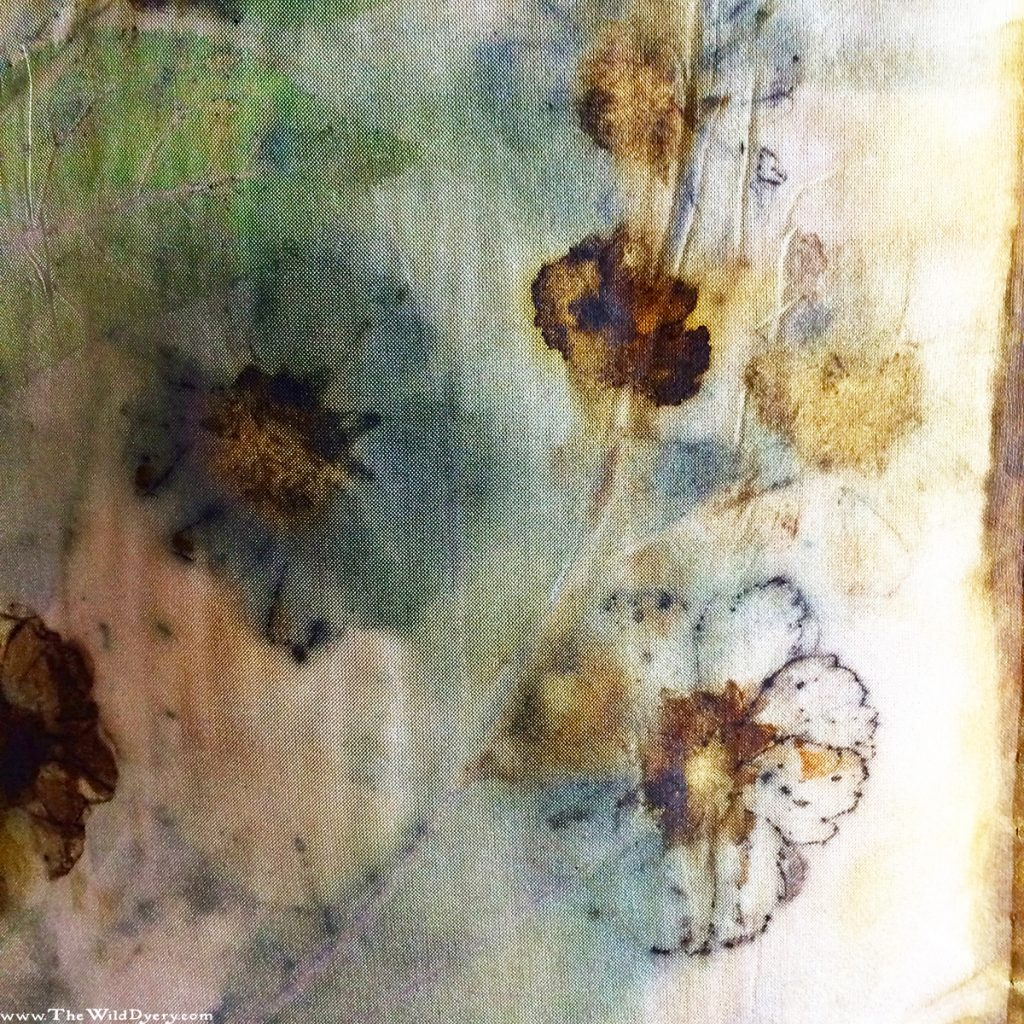 dyers camomile flower print scarf