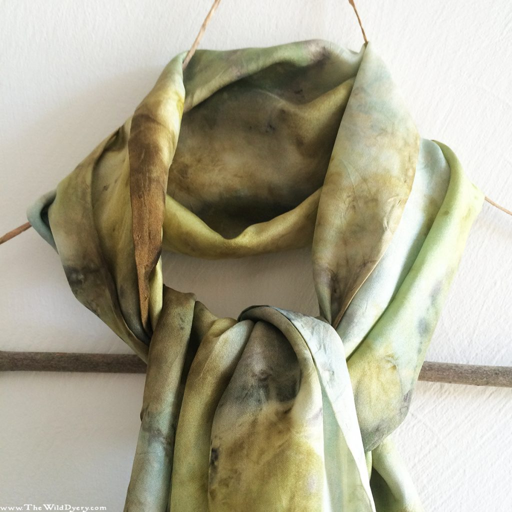 pale green camomile eco print scarf