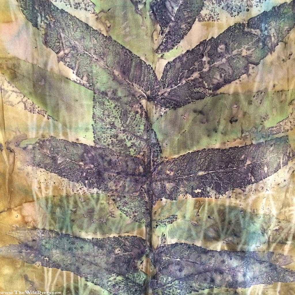 sumac branch eco print close up silk scarf