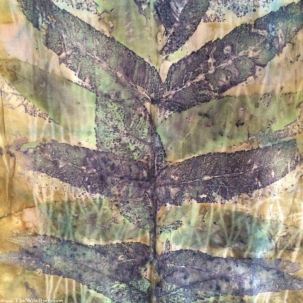 sumac branch eco print close up silk scarf