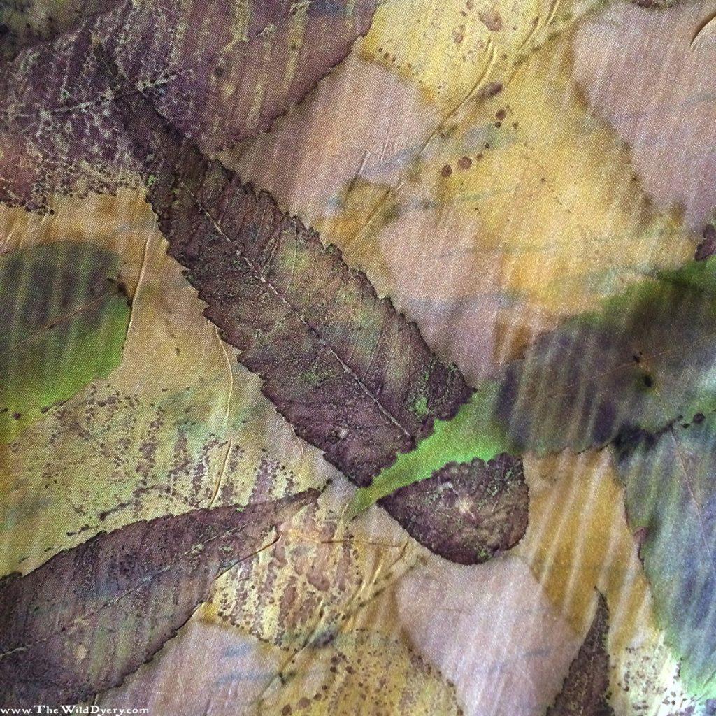 sumac leaf print close up ecoprinting