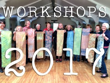 live workshop schedule for The Wild Dyery 2017