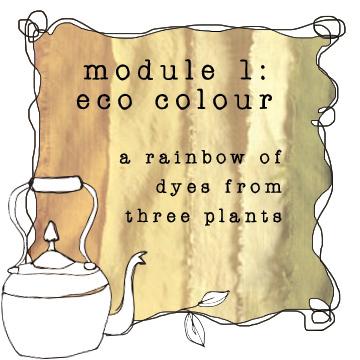 module 1 eco colour botanical colors