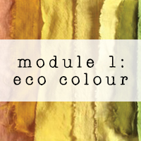 module 1 shop button natural dyes