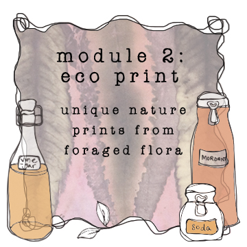 module 2 eco print printing nature