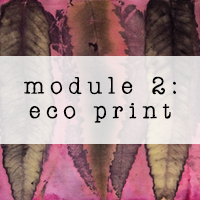 module 2 shop button eco printing