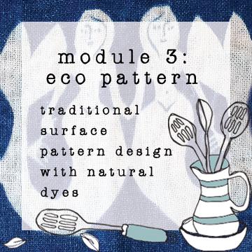 module 3 eco pattern