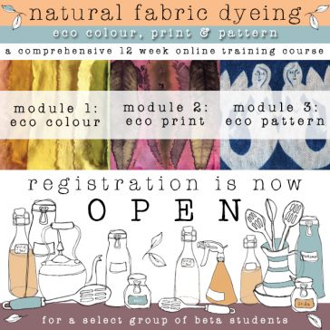 registration for natural dye online training is now open