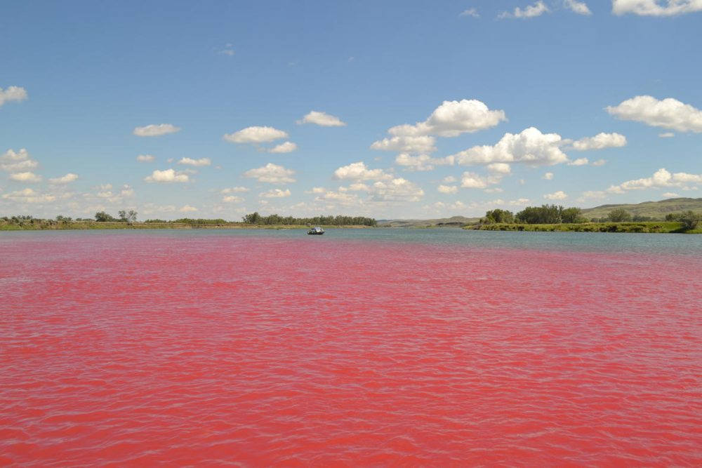 Red dye in the Missouri River