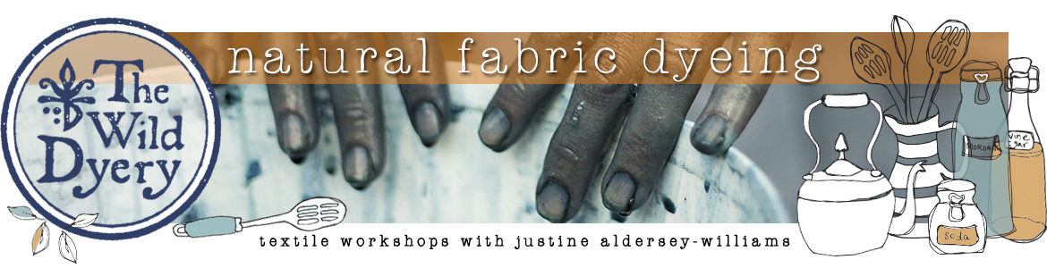 Natural Fabric Dyeing Online – Home-Study Workshops